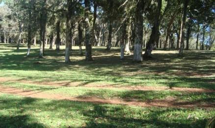 Parque de Ibiraiaras tem muita sombra para o público e pilotos