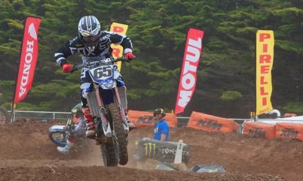 Daniel McCoy