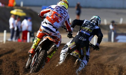 1308201435Cairoli and Desalle