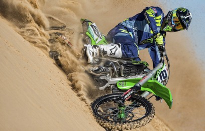 Desalle-colored-1