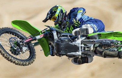 desalle-cropped