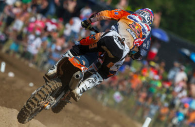 Herlings-back